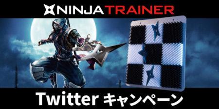 NINJA_TRAINER_忍者の日画像